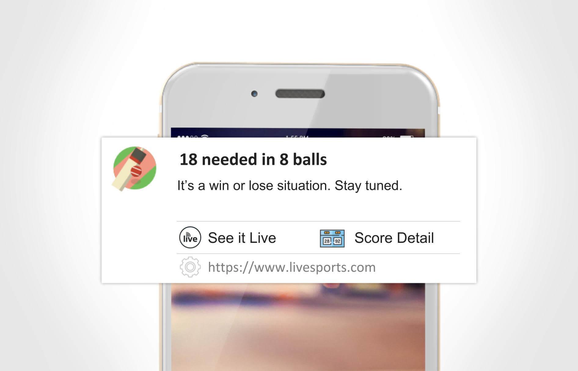 segmentation - cricket notification